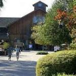 Davy Crockett's Ranch review