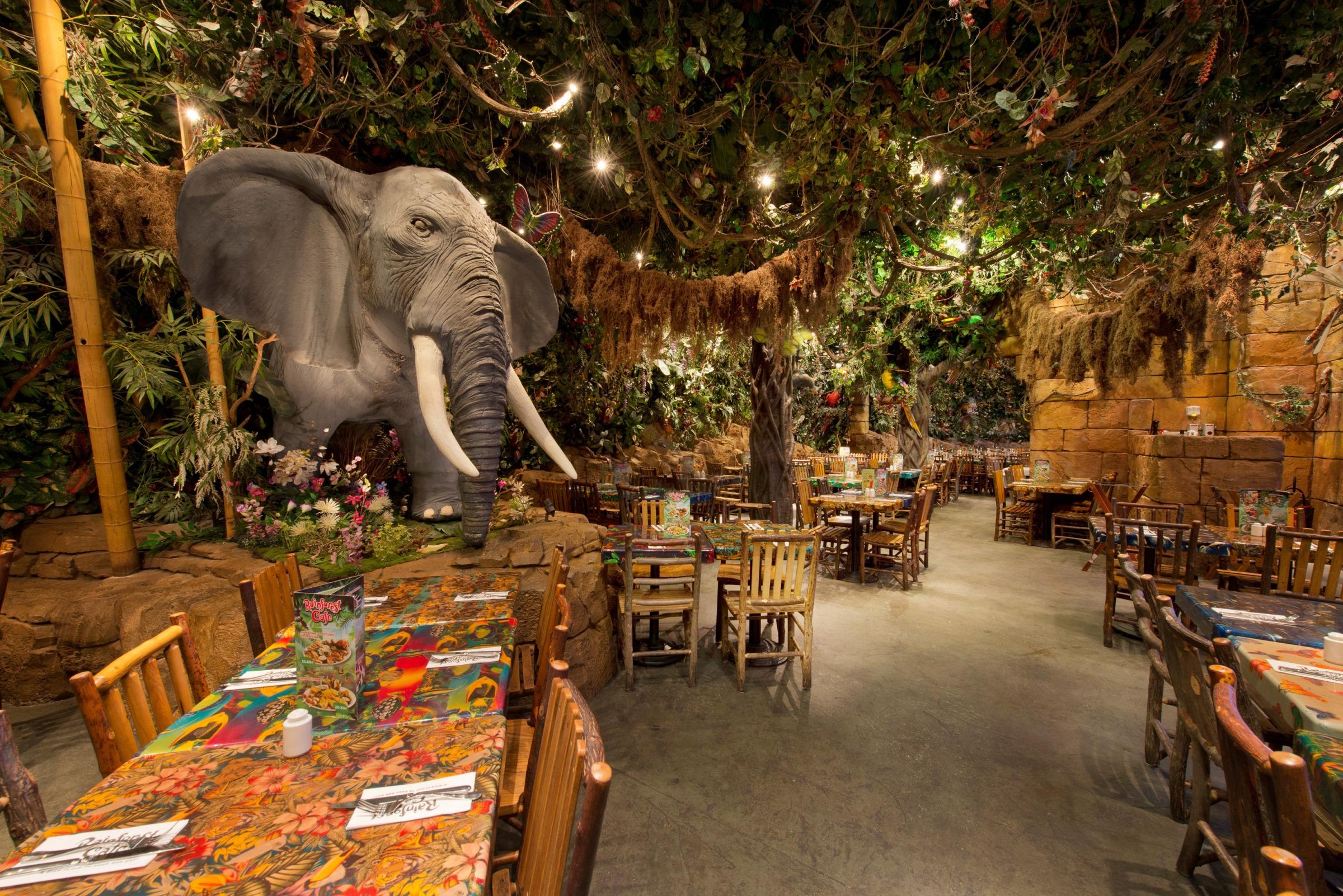 Rainforest Cafe Disneyland Paris Menu