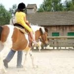 pony rides sports & leisure